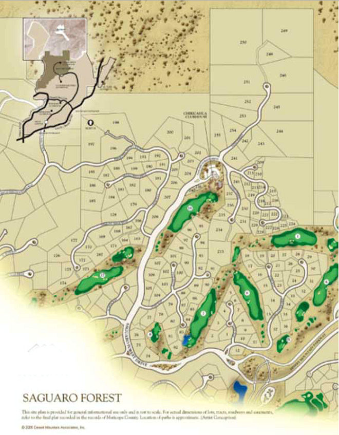 Saguaro Forest Map in Desert Mountain Scottsdale Arizona