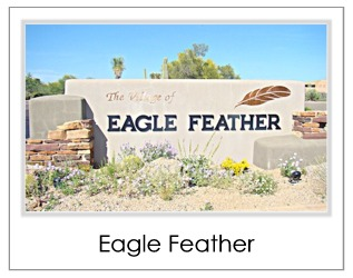 Eagle Feather Homes For Sale in Desert Mountain Scottsdale AZ