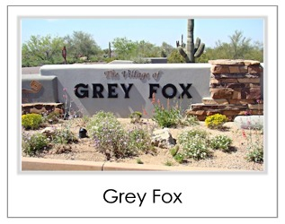 Grey Fox Homes For Sale in Desert Mountain Scottsdale AZ