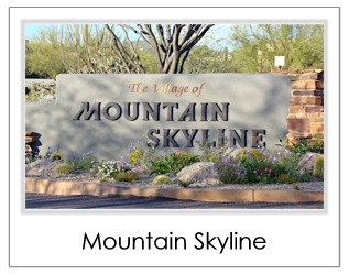 Mountain Skyline Homes For Sale in Desert Mountain Scottsdale AZ