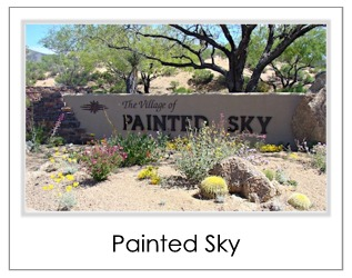 Painted Sky Homes For Sale in Desert Mountain Scottsdale AZ