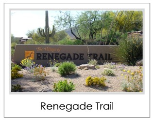 Renegade Trail Homes For Sale in Desert Mountain Scottsdale AZ