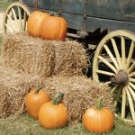Desert Mountain Halloween Carnival Coming Soon