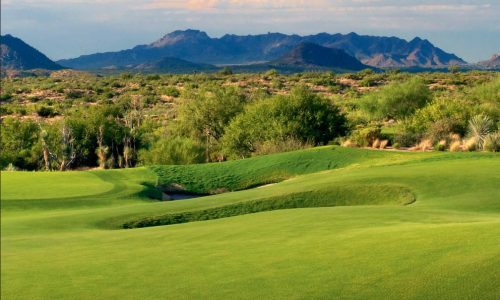 Desert Mountain 2017 Mid-Year Report